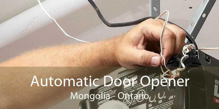 Automatic Door Opener Mongolia - Ontario