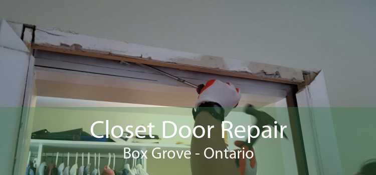 Closet Door Repair Box Grove - Ontario
