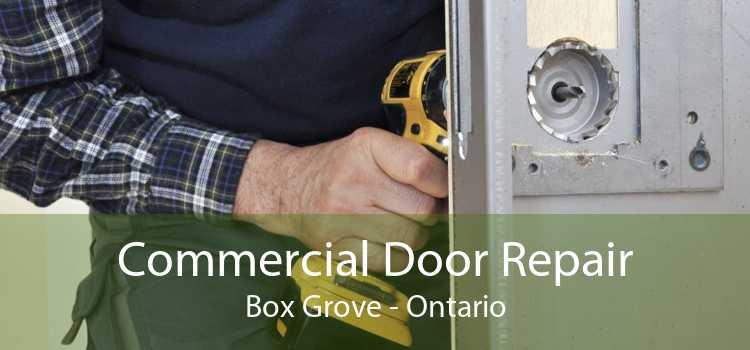 Commercial Door Repair Box Grove - Ontario