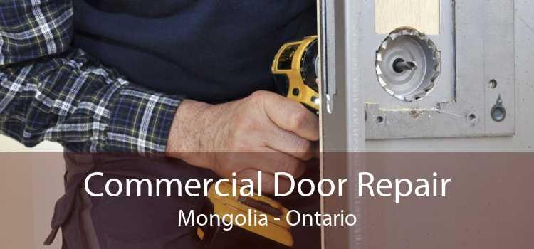 Commercial Door Repair Mongolia - Ontario