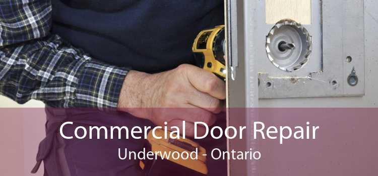 Commercial Door Repair Underwood - Ontario