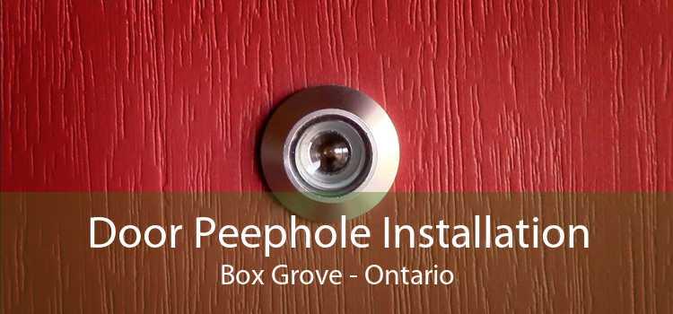 Door Peephole Installation Box Grove - Ontario