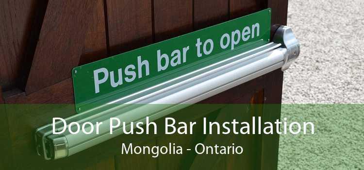 Door Push Bar Installation Mongolia - Ontario