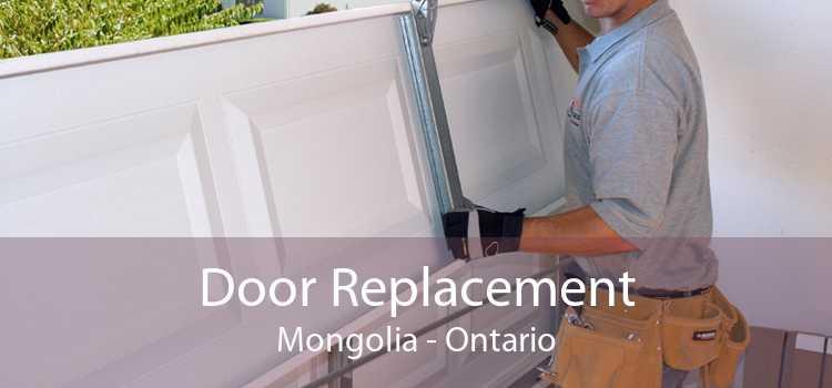 Door Replacement Mongolia - Ontario