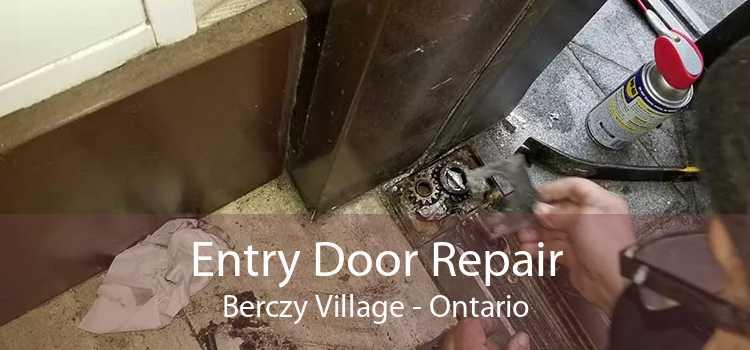 Entry Door Repair Berczy Village - Ontario