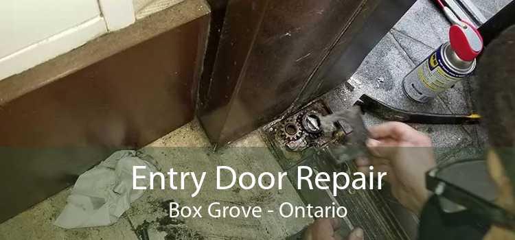 Entry Door Repair Box Grove - Ontario