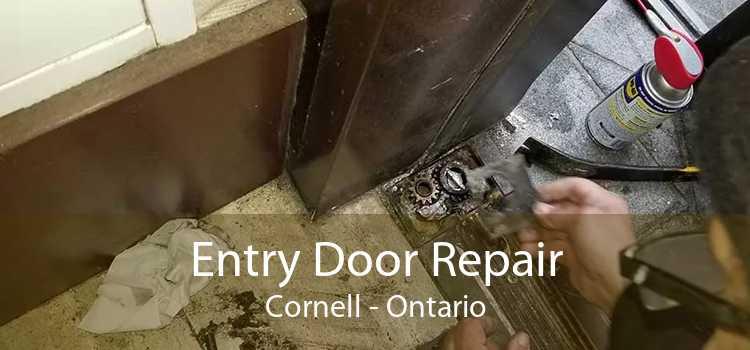 Entry Door Repair Cornell - Ontario