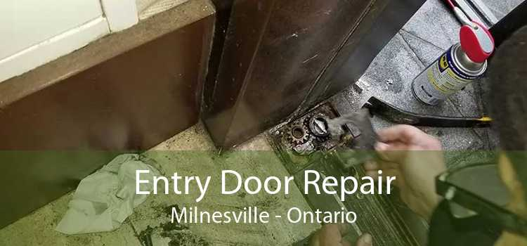 Entry Door Repair Milnesville - Ontario