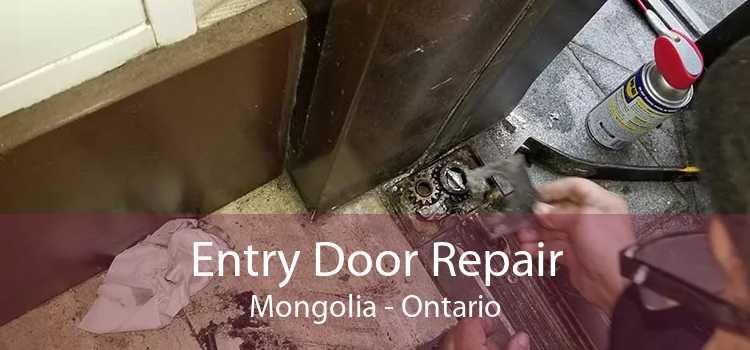 Entry Door Repair Mongolia - Ontario
