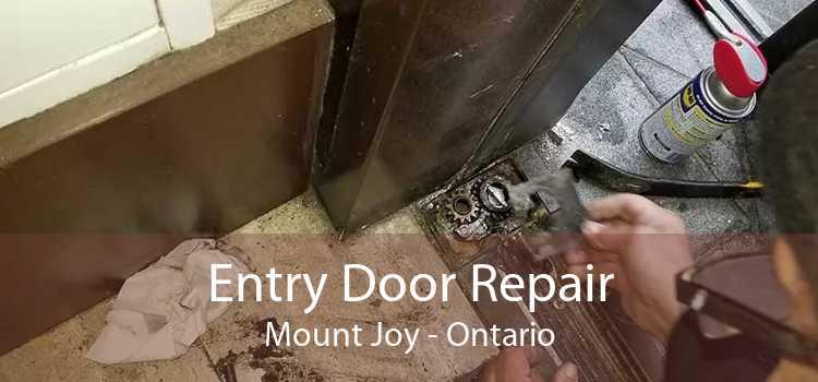 Entry Door Repair Mount Joy - Ontario