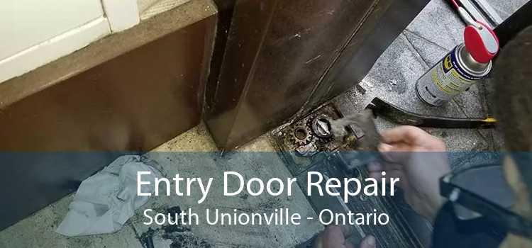 Entry Door Repair South Unionville - Ontario