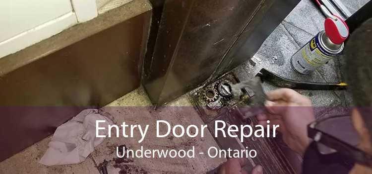 Entry Door Repair Underwood - Ontario