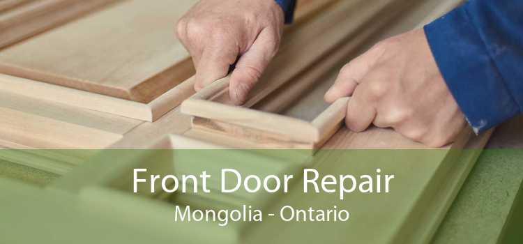 Front Door Repair Mongolia - Ontario