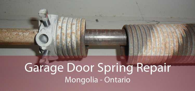 Garage Door Spring Repair Mongolia - Ontario