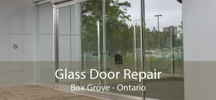 Glass Door Repair Box Grove - Ontario