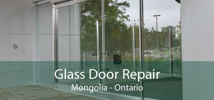 Glass Door Repair Mongolia - Ontario