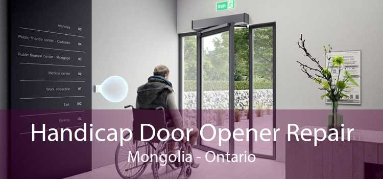 Handicap Door Opener Repair Mongolia - Ontario