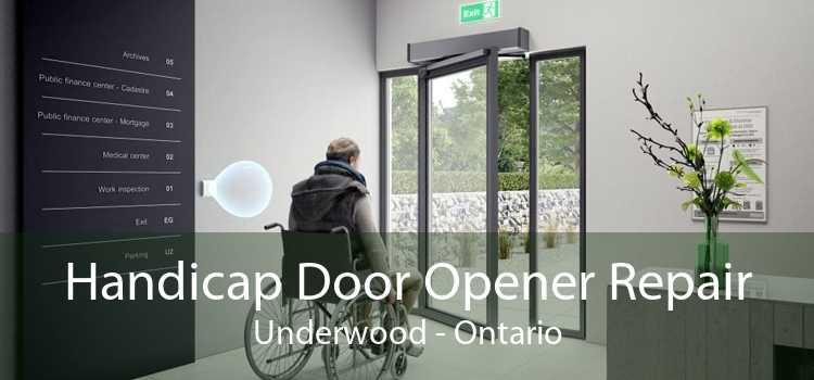 Handicap Door Opener Repair Underwood - Ontario