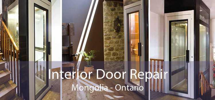 Interior Door Repair Mongolia - Ontario