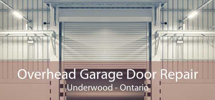 Overhead Garage Door Repair Underwood - Ontario
