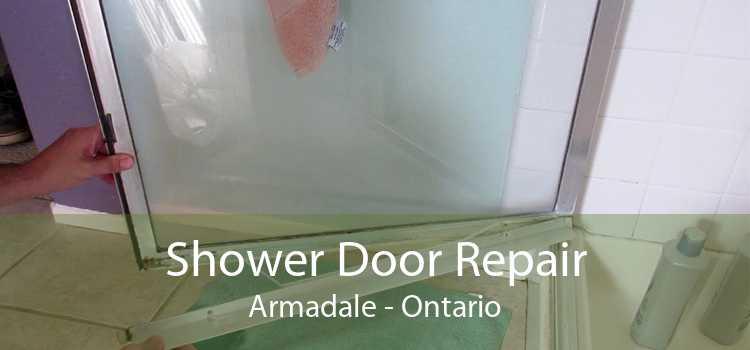 Shower Door Repair Armadale - Ontario