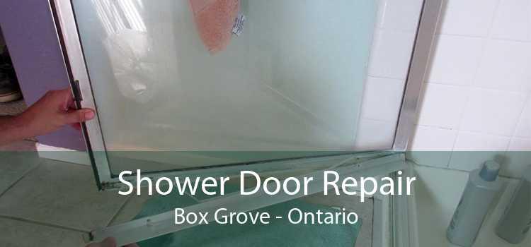 Shower Door Repair Box Grove - Ontario