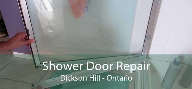 Shower Door Repair Dickson Hill - Ontario