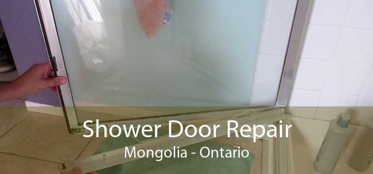 Shower Door Repair Mongolia - Ontario