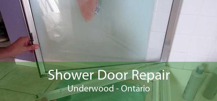 Shower Door Repair Underwood - Ontario