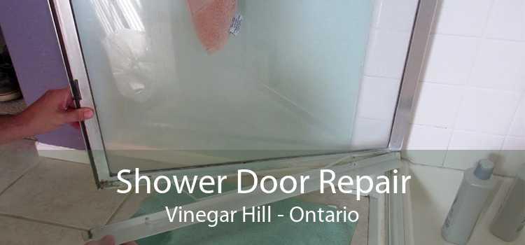 Shower Door Repair Vinegar Hill - Ontario