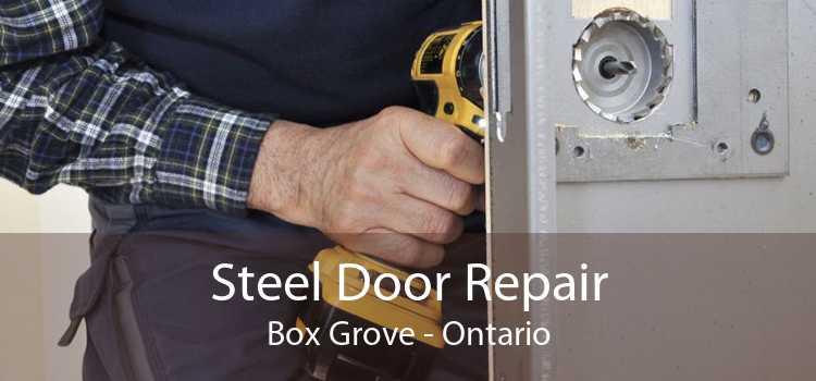 Steel Door Repair Box Grove - Ontario