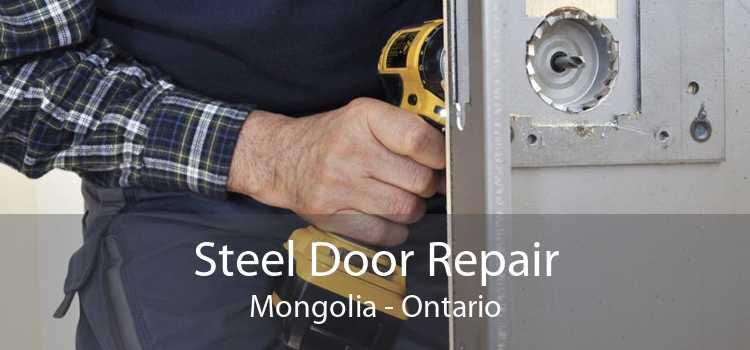 Steel Door Repair Mongolia - Ontario