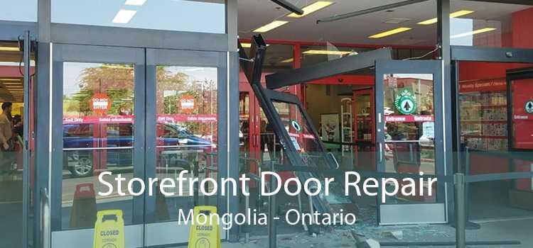 Storefront Door Repair Mongolia - Ontario